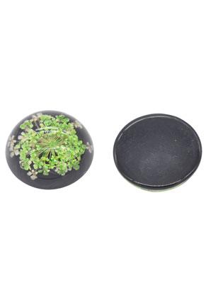 www.sayila.com - Resin dried flowers flat backs/cabochons round 20mm
