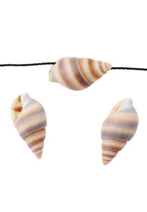 www.sayila.es - Abalorios/colgantes de concha 19x10mm (± 100 pzs.)