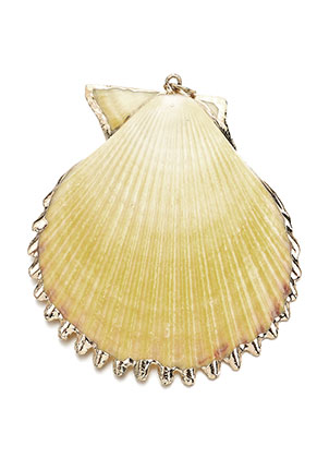 www.sayila.com - Shell pendant with metal eye 50-70x40-60mm