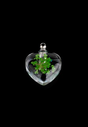 www.sayila.nl - Glazen flesje met metalen dopje en gedroogde bloem 22x18mm