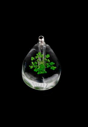 www.sayila.nl - Glazen flesje met metalen dopje en gedroogde bloem 33x19,5x7,5mm