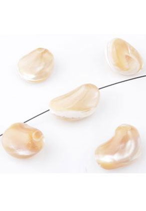 www.sayila.com - Shell beads irregular ± 13-18x4-12mm