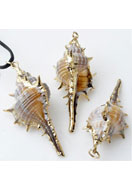 www.sayila.com - Shell pendant with metal eye 49-75x19-31mm - E00940